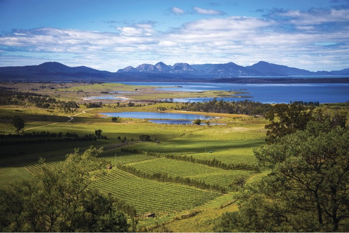 wine_tasmania