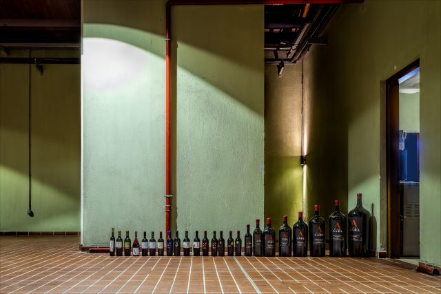 Wine bottle line up by Andrew Barrow