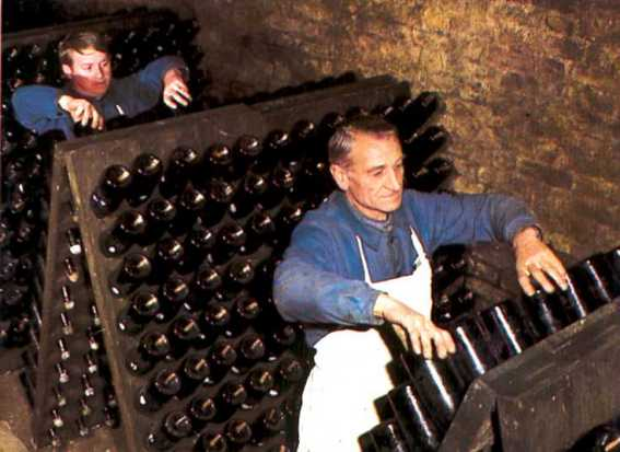 Riddling Champagne takes place every couple days and involves a quick shake and turn of each bottle.
