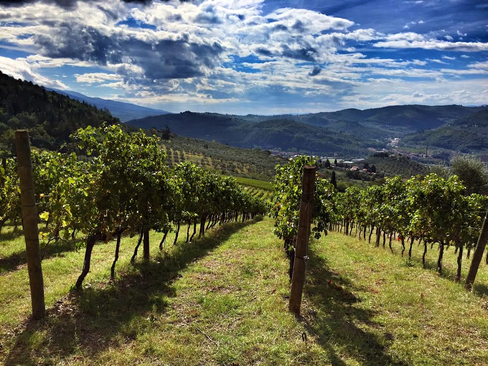 On the hunt in Italy: Day 3 & 4 at I Veroni