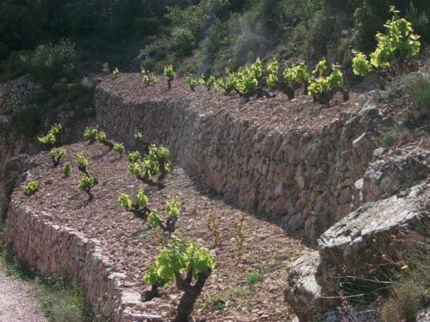 Priorato