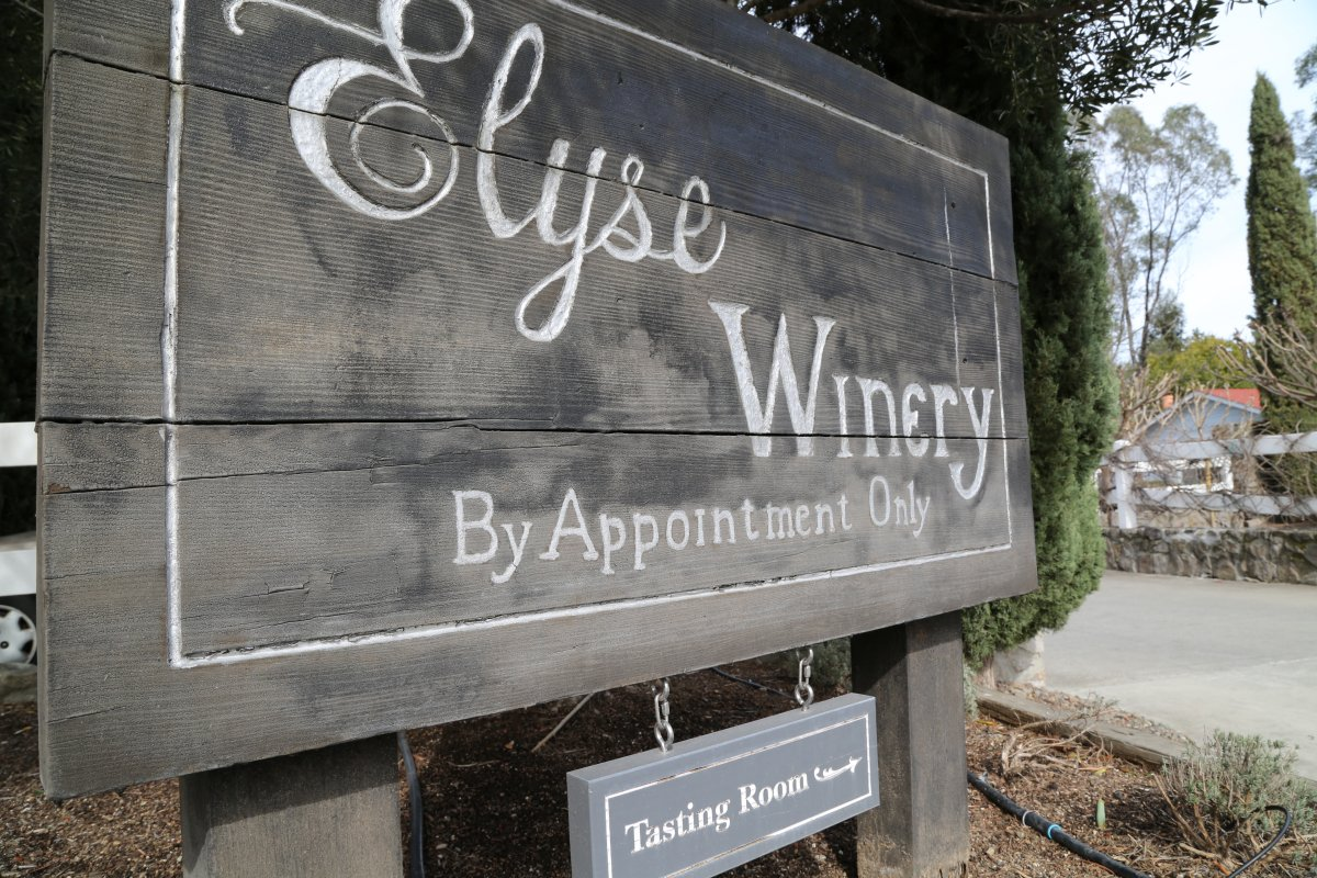 Elyse-Winery-2