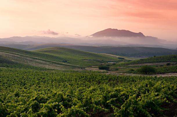 7 exciting wine regions flying under the radar