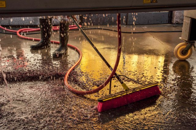 Processing Merlot at Duckhorn Vineyards by Robert Holmes