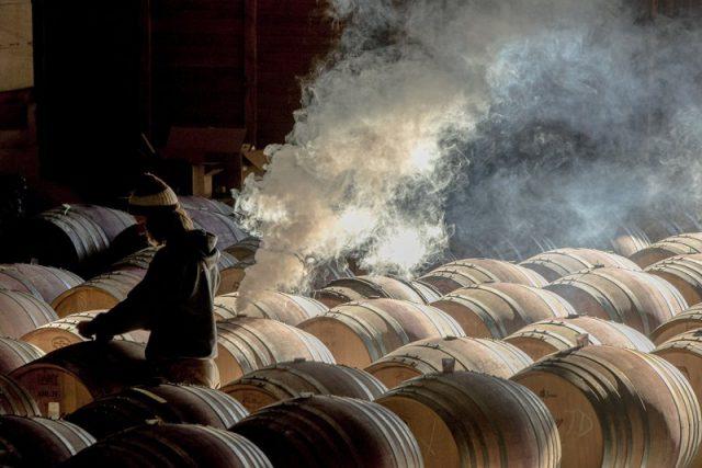 Maysara Winery by Robert Holmes