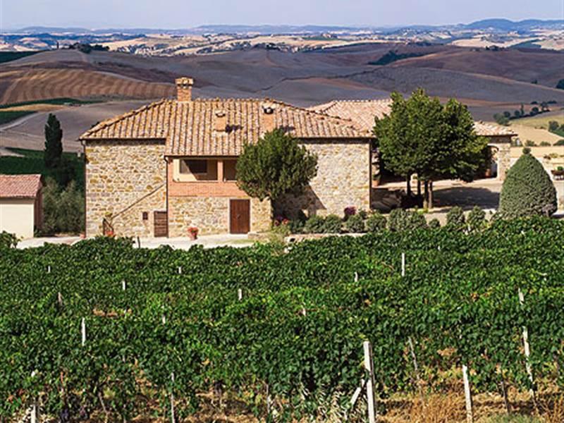 La Fortuna exudes the true spirit of Tuscan winemaking