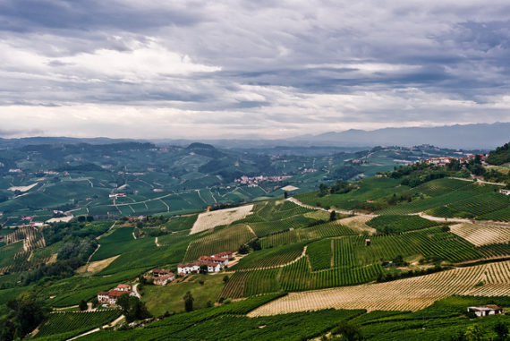 The landscape in Piedmont is a thing of beauty. Photo credit