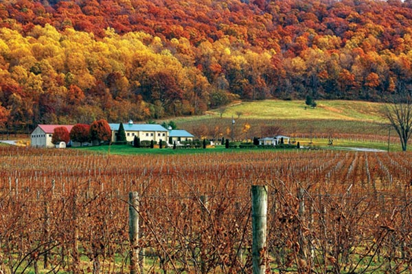 loudoun-breaux-vineyards-sf12