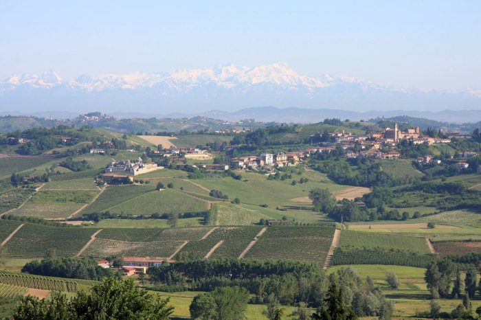 The striking Barolo landscape, with its rolling hills extending toward the swiss Alps in the north, is a sight to behold.